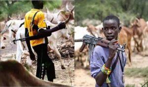 Fulani Herdsmen 1
